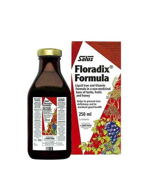 Salus Floradix 250 Ml.